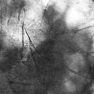 Lo bello no es una sustancia en sí sino tan solo un dibujo de sombras
