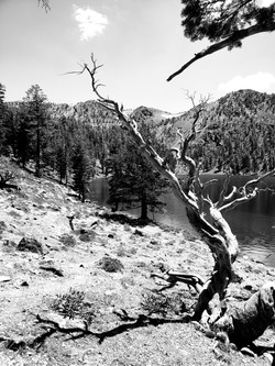 Deadfalls Lake, CA