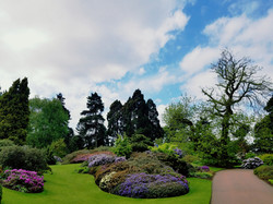 Edinburgh Botanical Gardens