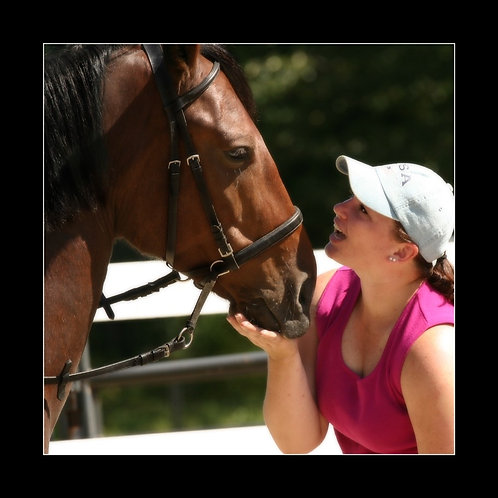 Naturopathic Therapies for Horses (Ages 11-15) New Hampshire Vacation