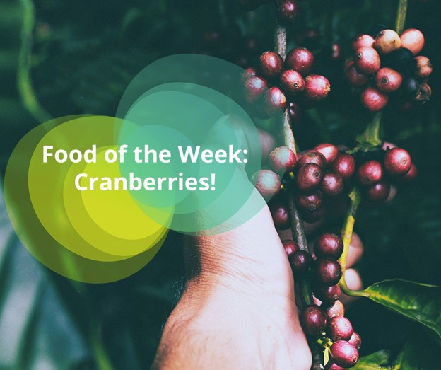 Evocco Food of the Week - Cranberries