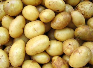 Crushed New Potatoes, Broccoli & Blood Orange Cream.
