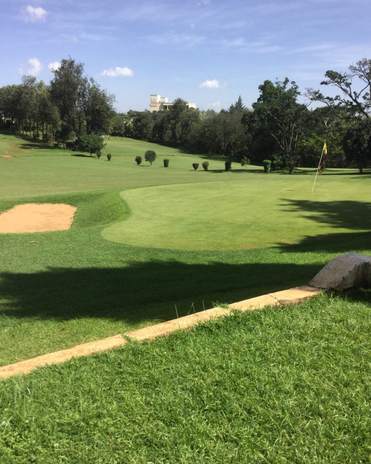 Nyeri Golf Course.png
