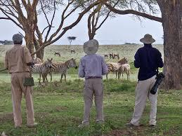walking safari.jpeg