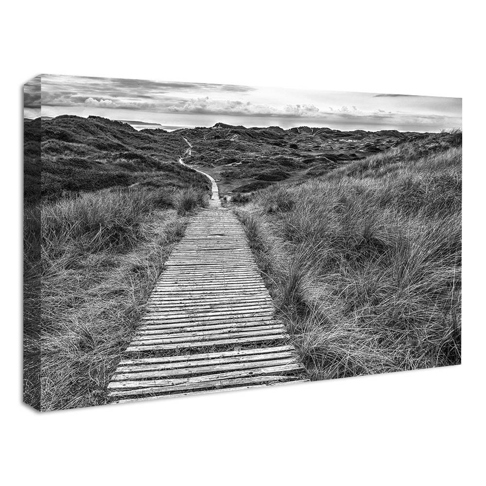 Boardwalk Canvas