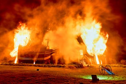 Mayflower_36382.jpg