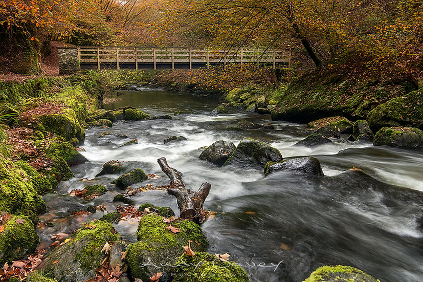 Bridge over East Lyn river near Watersmeet