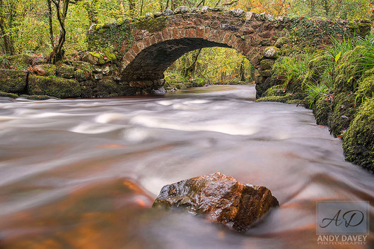 Autumn Bridge Hisley.jpg
