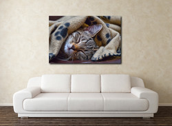TigerW2
