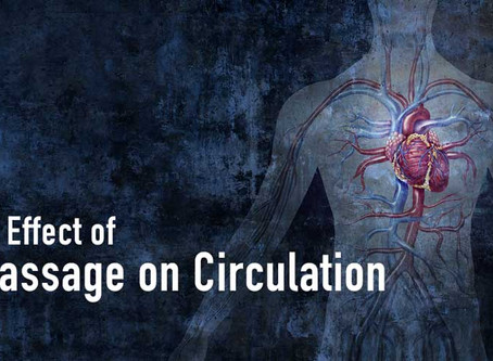 Effect of Massage on Circulation