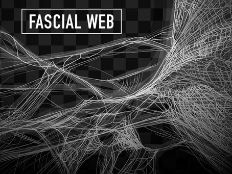 Emotions and The Fascial Web