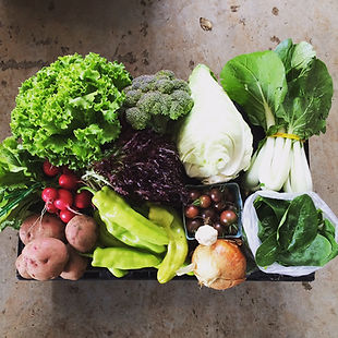 Slice of Heaven Farm CSA box