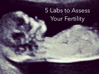5 Labs to Assess Your Fertility & What Age to Test Them