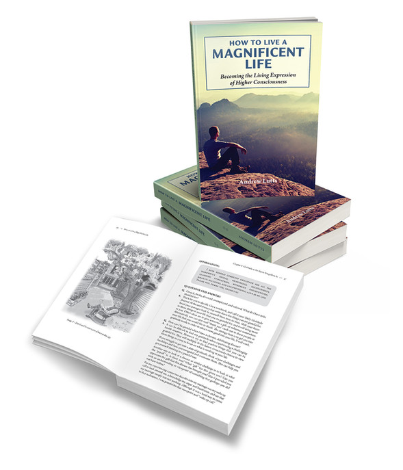 How to Live A Magificent Life cover & interior design