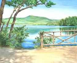 Summer View Mt-Chocorua