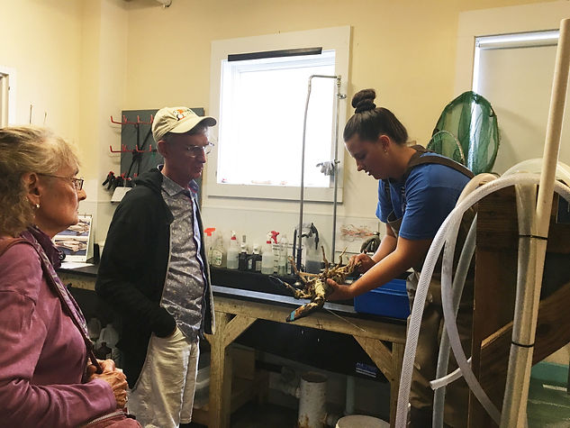 Sophie Manning ('19) showing Bill Nye a lobster at her internship at the Maine State Aquarium.