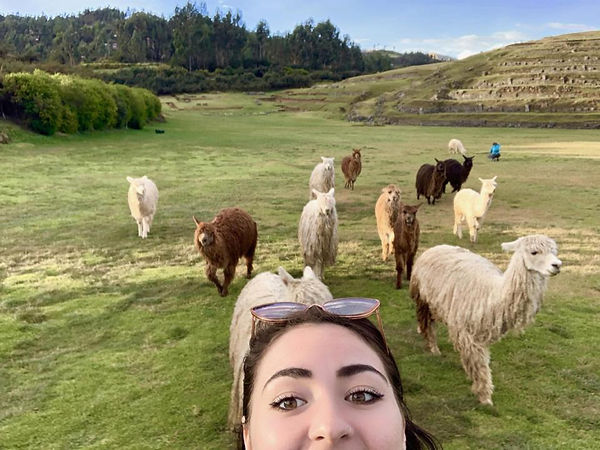 Lexi in front of some llamas