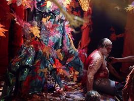Dexter Calliope and the Adarna Bird (2005)