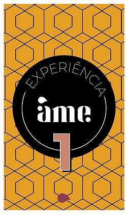 Experiência Âme 1 - Comercial x Especialidade