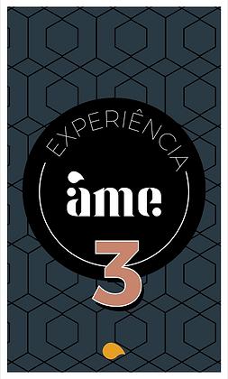 Experiência Âme 3 - Mesmo método, diferentes grãos de café