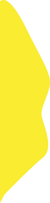 recorte_lateral_esquerda_yellow.png