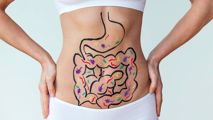 gut-digestion-stomach-gettyimages-892955