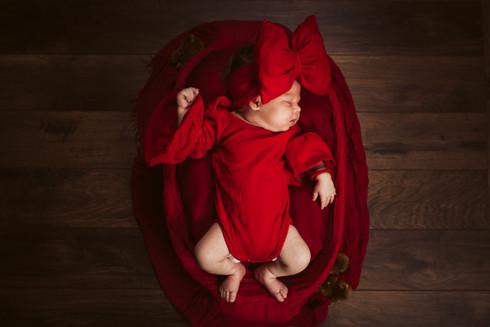beba Tara Cevriz 099.jpg