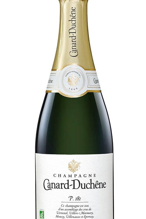 Champagne P181