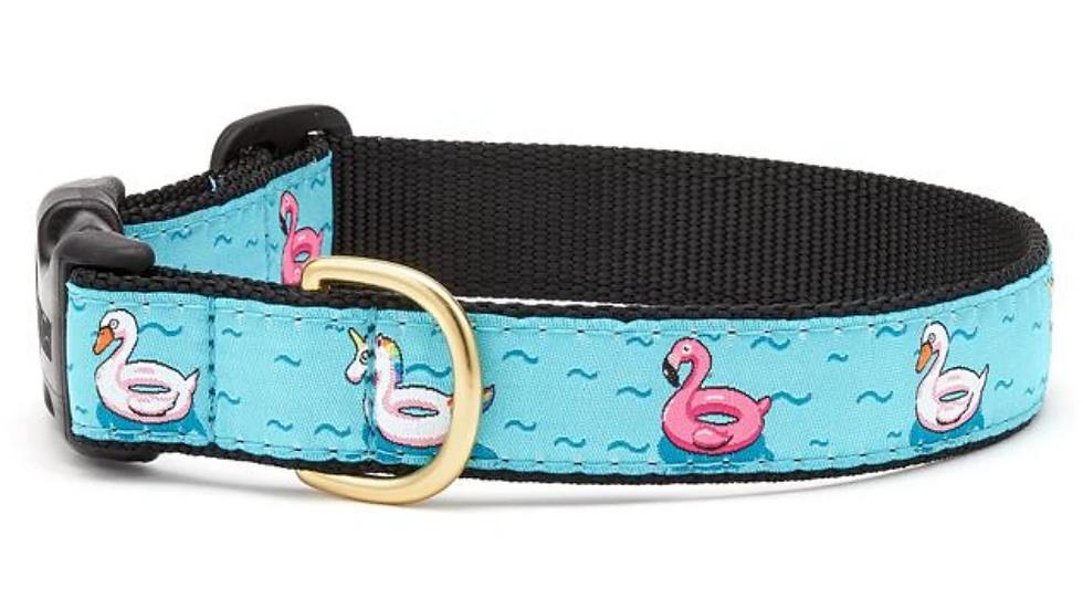 Floaties Dog Collar