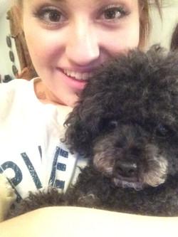 Lainey the Poodle