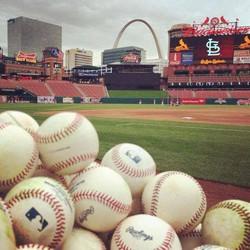 StL Baseball