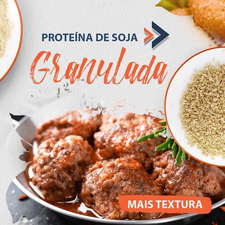 Proteina-de-soja-granulada.png