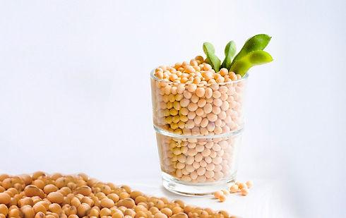 Industria de Alimentos com Certificação Iso 9001, Ksher, Halal e FSSC 22000