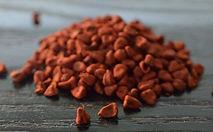 urucum-achiote-annatto-semente