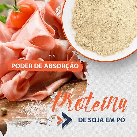 proteina-de-soja-em-po.png