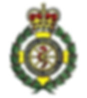 Welsh Ambulance Service Trust badge