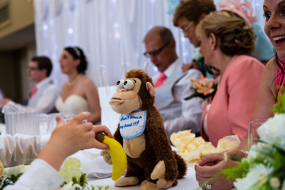 Monkey at a wedding in Herenston Hotel Ewenny