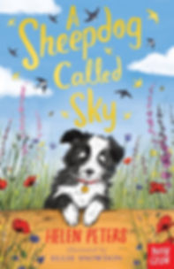 A-Sheepdog-Called-Sky-284603-1-456x702.j