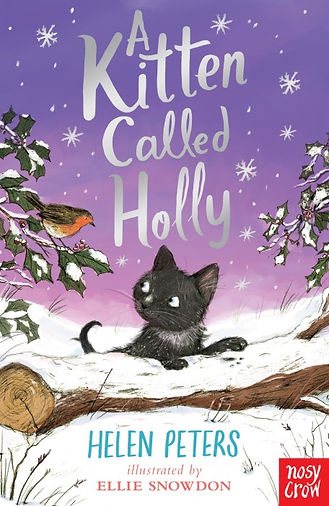 A-Kitten-Called-Holly-314123-1-456x702.j
