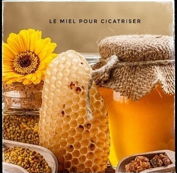 🍯 Le miel, le guérisseur de plaies.