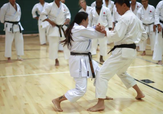 Sensei Carol doing Kumite Drills