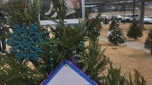 Shoals Tinsel Trail Tree
