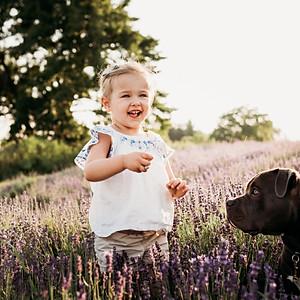 Lavender Mini - Karalee