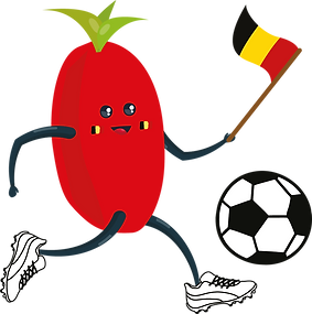 Voetbal - rood 3.png