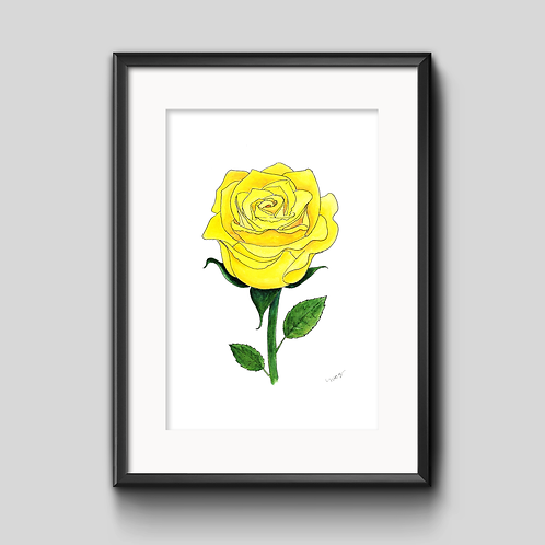 Yellow Rose Watercolor Painting - Unframed Print