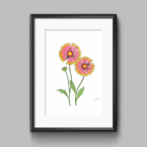 Indian Blanket Watercolor Painting - Unframed Print