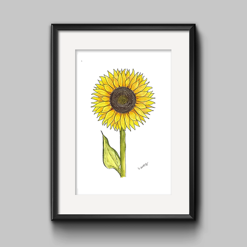 Sunflower Watercolor Painting - Unframed Print