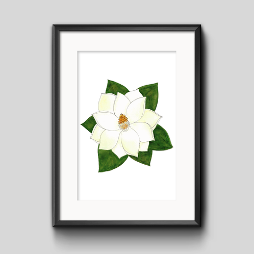 Magnolia Watercolor Painting - Unframed Print