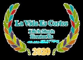 LVECWhite%402x%20(1)_edited.png