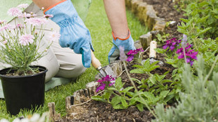 Spring and Summer Gardening … Without Injuries